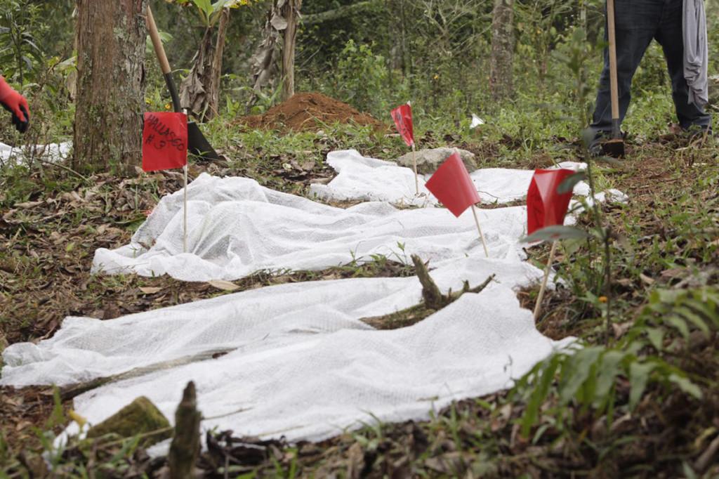 Primera Brigada Nacional de Búsqueda de Personas Desaparecidas, Amatlan Veracruz